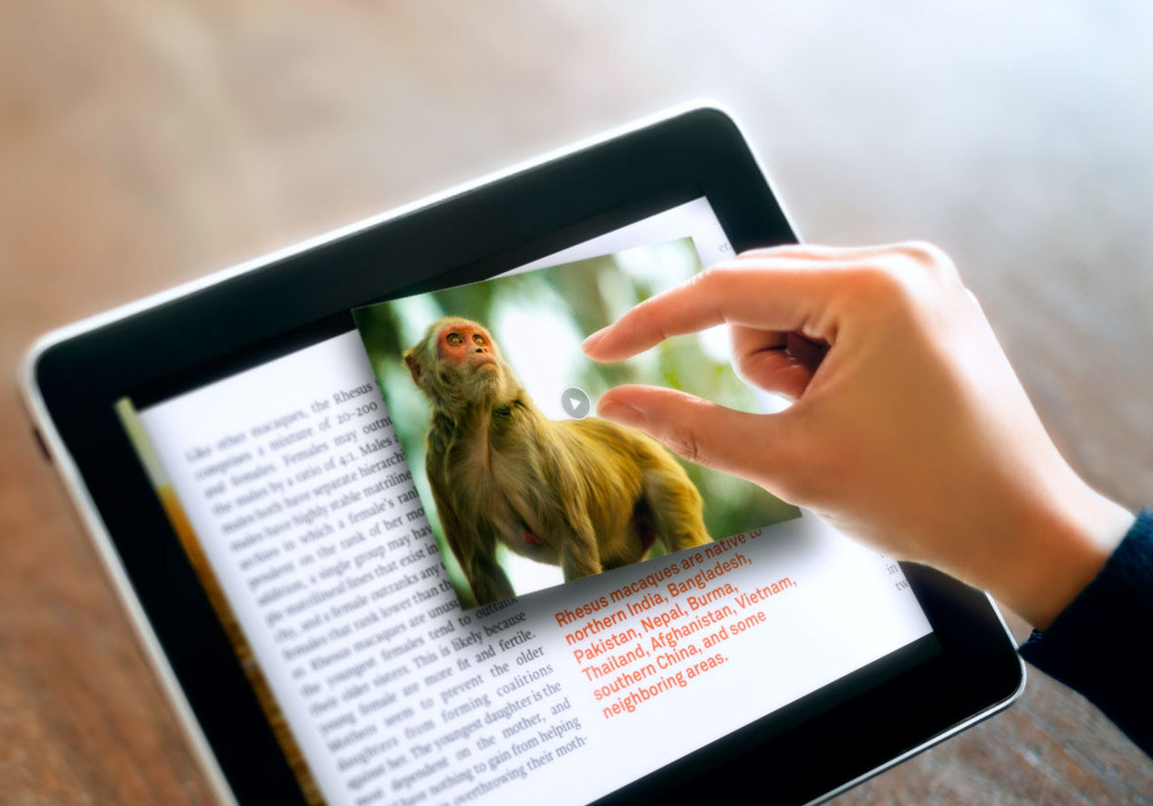 A stock image of a person reading a book on tablet computer